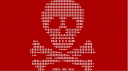An image of a Skull and Cross Bones made of dollar signs and code - to signify Ransomware